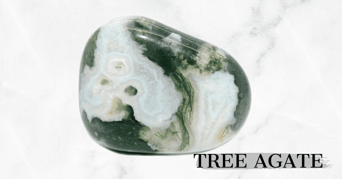 Tree Agate tumbled stone